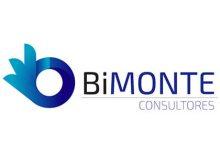 bimonte-consultores-www.scsarquitecto.cl_